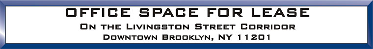 Brooklyn Office Commercial Space Real Estate Listing
